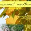 Gemeindebrief  Mitte September bis Totensonntag